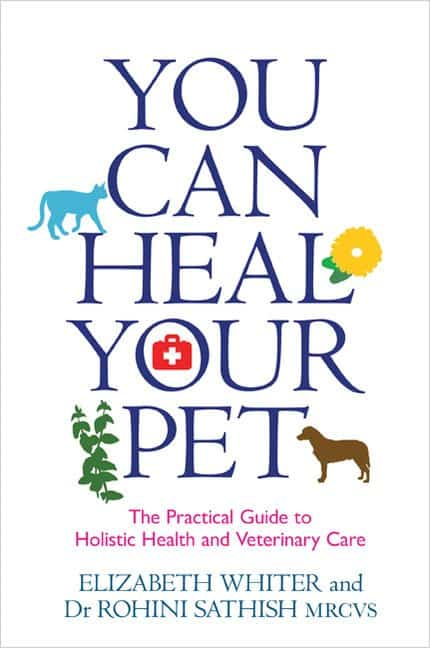 You can heal your pet