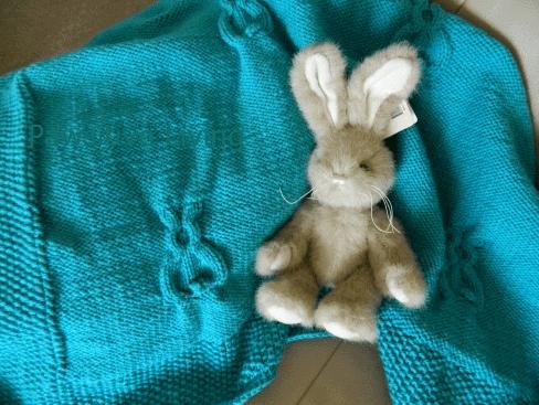 sunny bunny 1