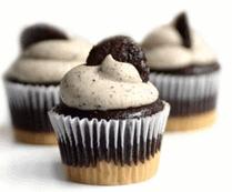 sfte cupcakes