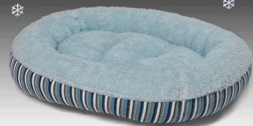 Van Ness pet bed 2