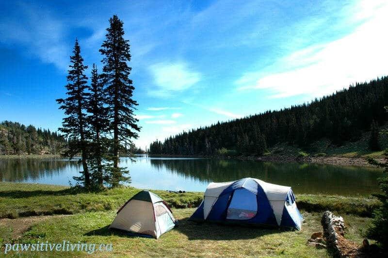 Camping tents near a lake