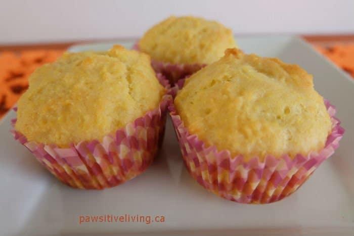 Cozy Corn Muffin