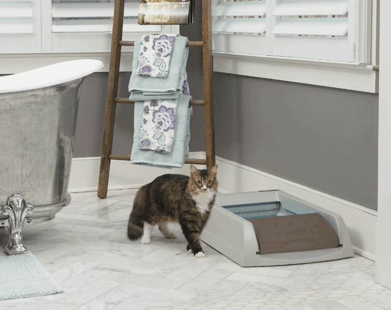 PetSafe ScoopFree Self-Cleaning Litter Box