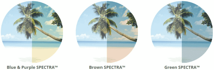 d299a8c70dd1 ... advantage of having sunglasses with a variety of SPECTRA colored  lenses. You can learn more about all the benefits of the various SPECTRA  colors here.