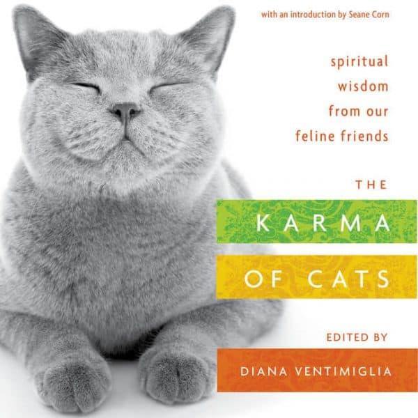 Karma of Cats