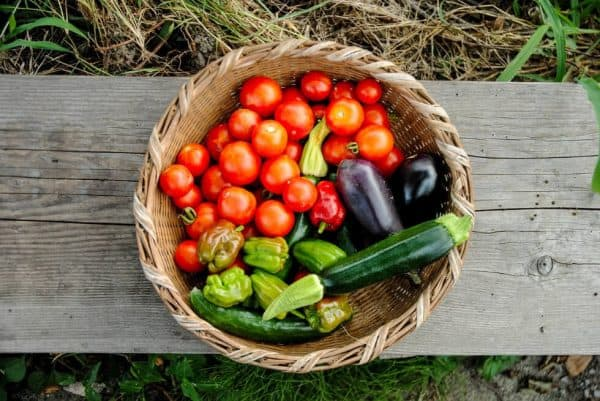basket of freshing picked home grown vegetables - Pixabay